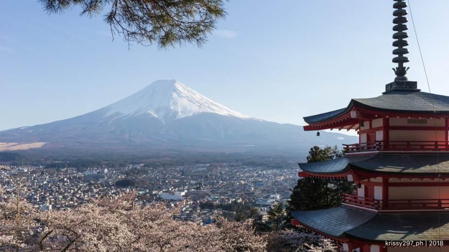 Spring Diary 2019: Sakura and Mt.Fuji